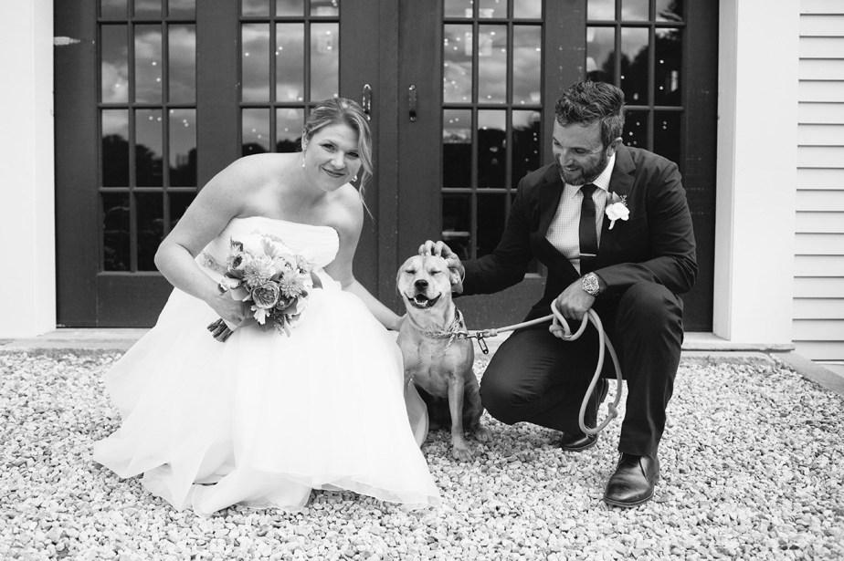 Dogs at Flanagan Farm Weddings
