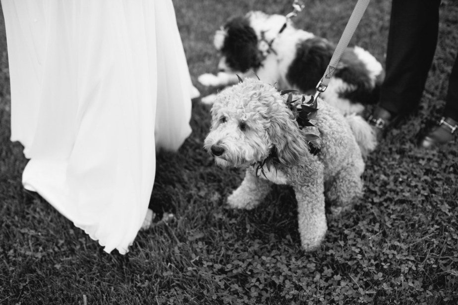 Marianmade Farm Wedding by Meredith Perdue